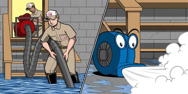 Water Damage Cleanup Restoration Pro 24