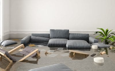 Which Water Damage Companies Offer The Best Prices?